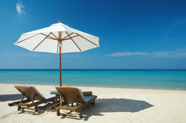 beach furniture town: turtles can navigate furniture. u0027 PFHZKXN