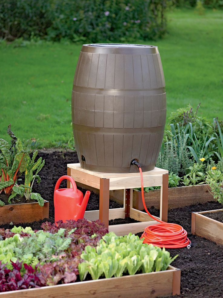 best 25+ garden ideas ideas on pinterest LUTESBK
