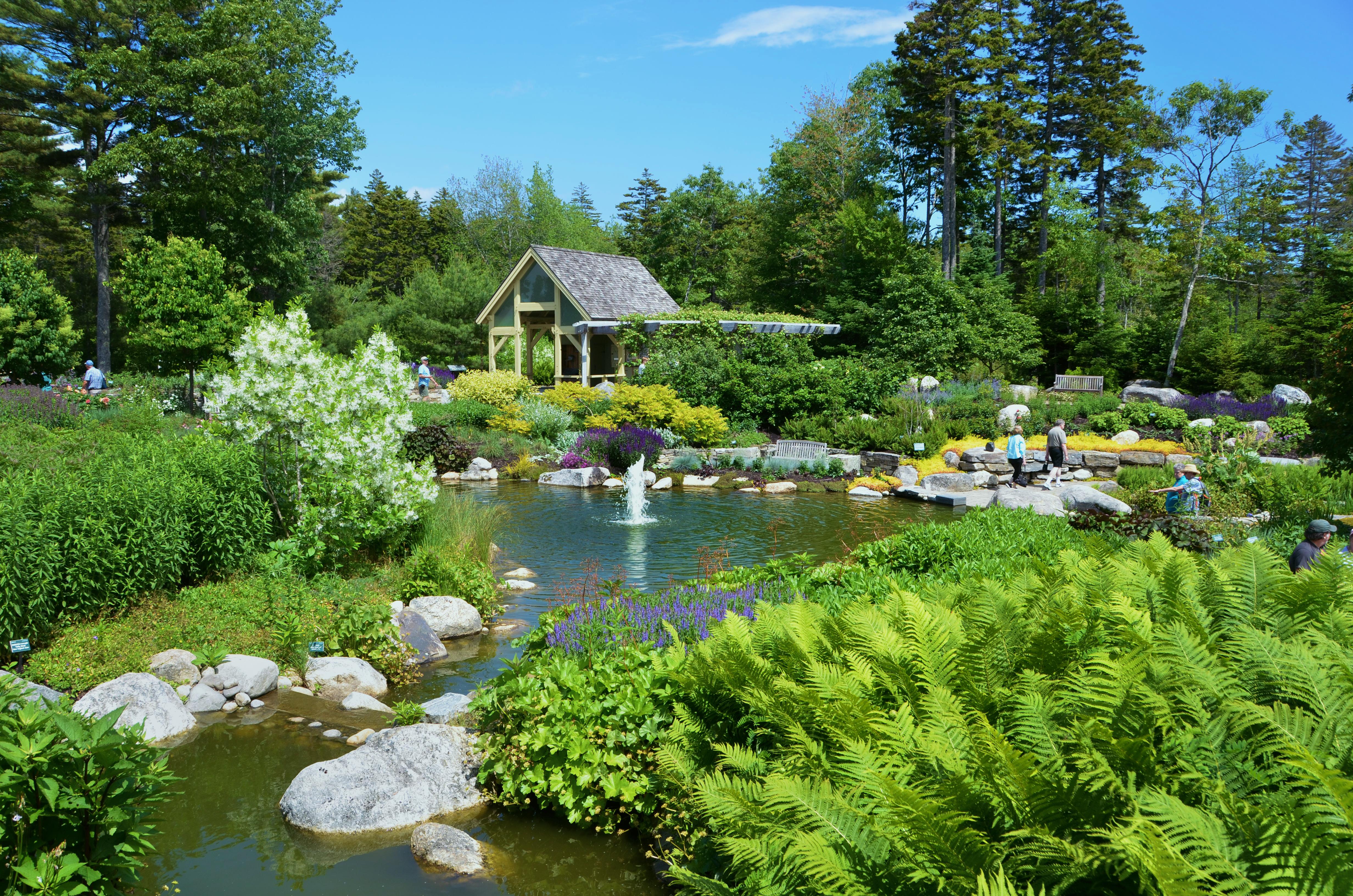 botanical gardens lush-lerner-garden-dsc_6435 FILHTOX