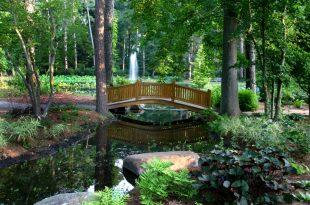 botanical gardens website design u0026 development by visual harbor. OWQFZYH