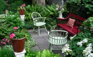 home garden design small garden, big interest eric sternfels (homeowner) philadelphia, pa GBVCLOM
