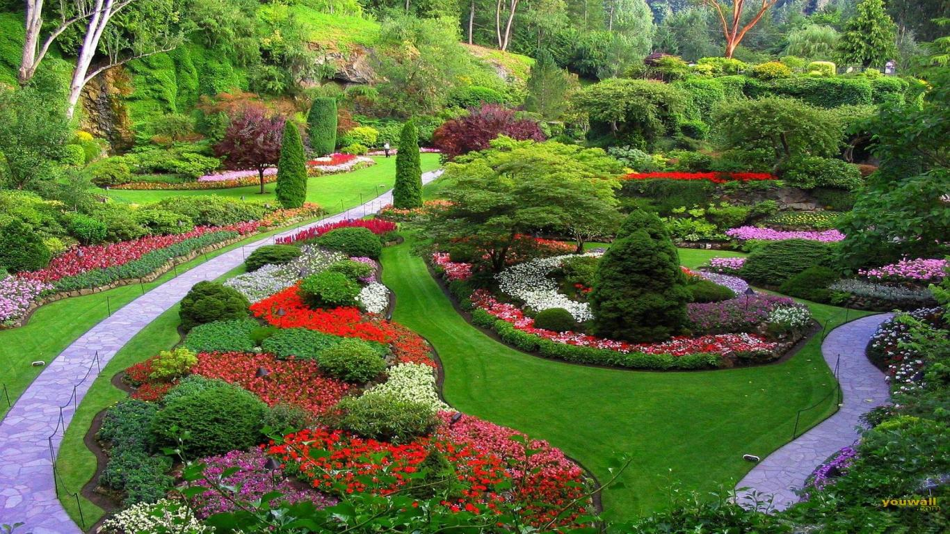 Outdoor beautification: landscape designs
