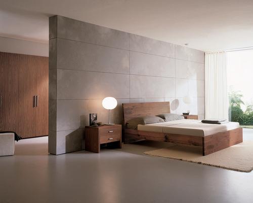 modern bedroom minimalist bedroom photo in philadelphia with gray walls PFNOALN