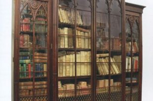 neo-gothic-bookcase- reclaimed antique bookcase- make into bar shelving DHFSUNW