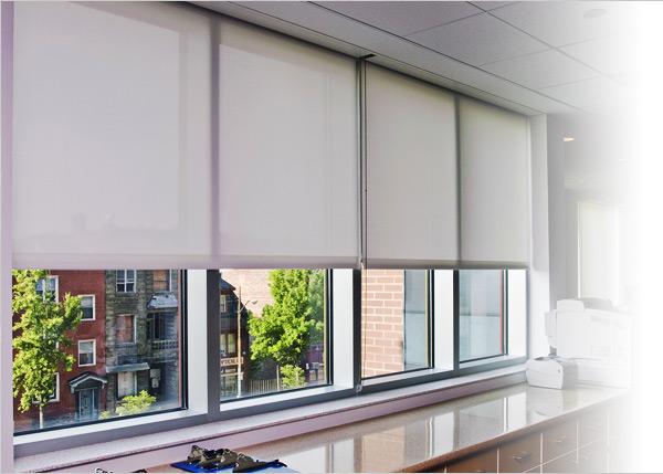 patrician window coverings QNKSTFE