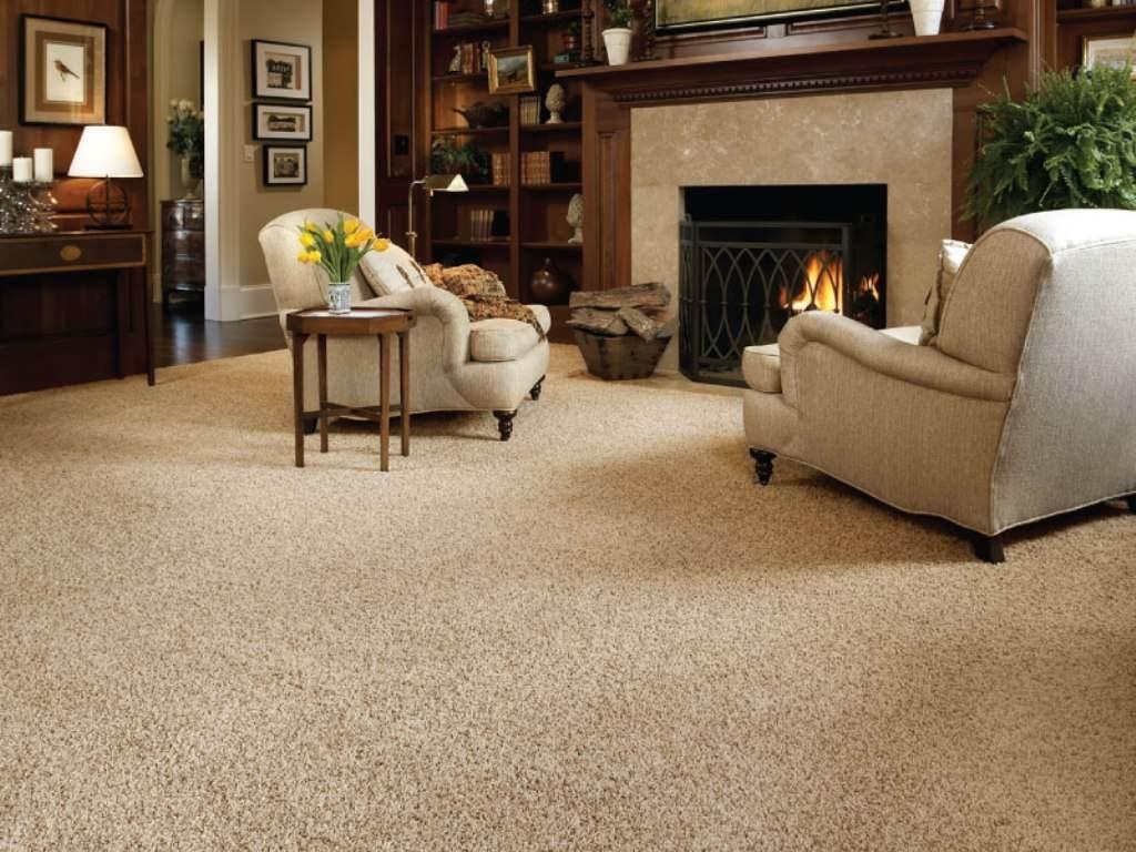 best living room carpet HQEEXPT