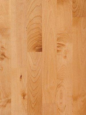 birch hardwood flooring birch wood flooring WEXWRVU