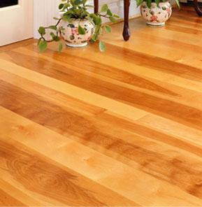 birch hardwood flooring JMDJBSD