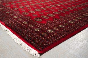 bokhara rugs bokhara rug traditional-living-room EAVTOQW