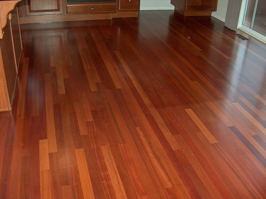 brazilian cherry hardwood flooring and dogs OLLEDWS