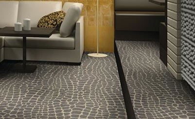 Carpet commercial ... shaw commercial carpet river croc in lounge around 401x246 ZKIEFCM