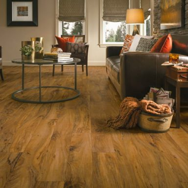 flooring ideas living/family rooms WPRDZGS
