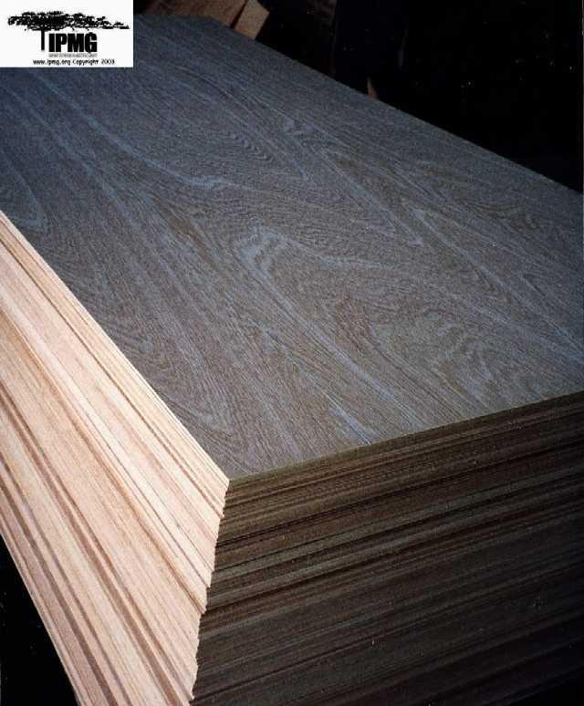 imported hardwood plywood - buy plywood product on alibaba.com EBTGFMM