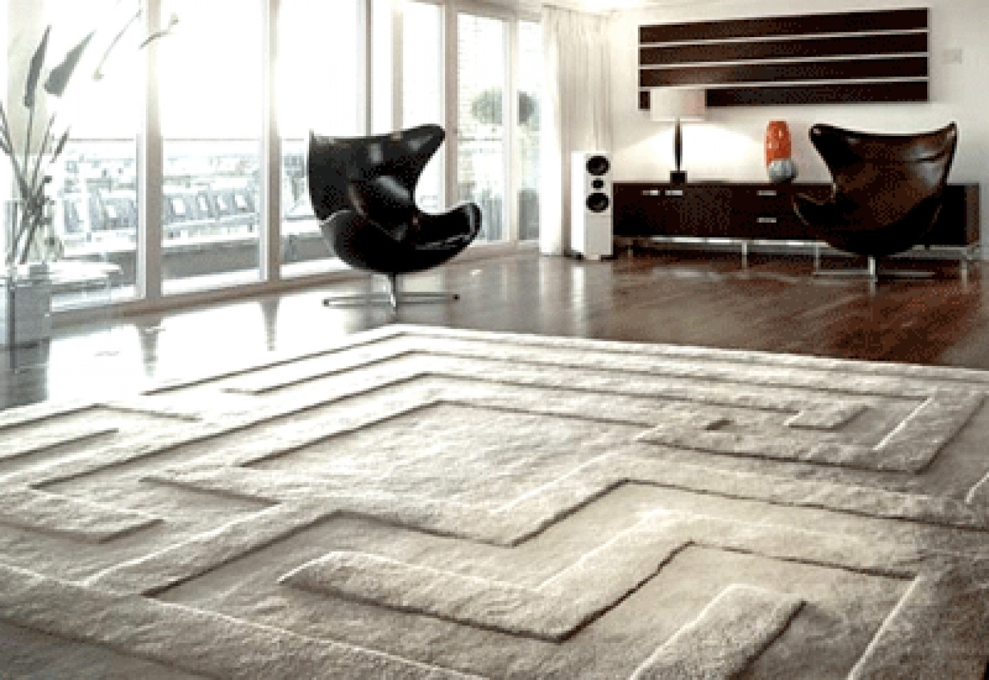 Cover your place with stunning large area rugs