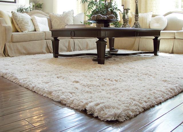 living room carpet auroroa borealis shag rug traditional-living-room VPTLRMV