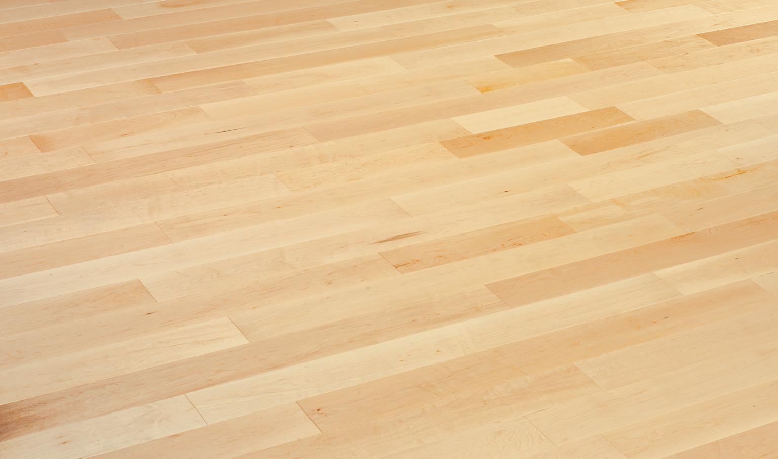 maple floor maple natural XMWHZUX