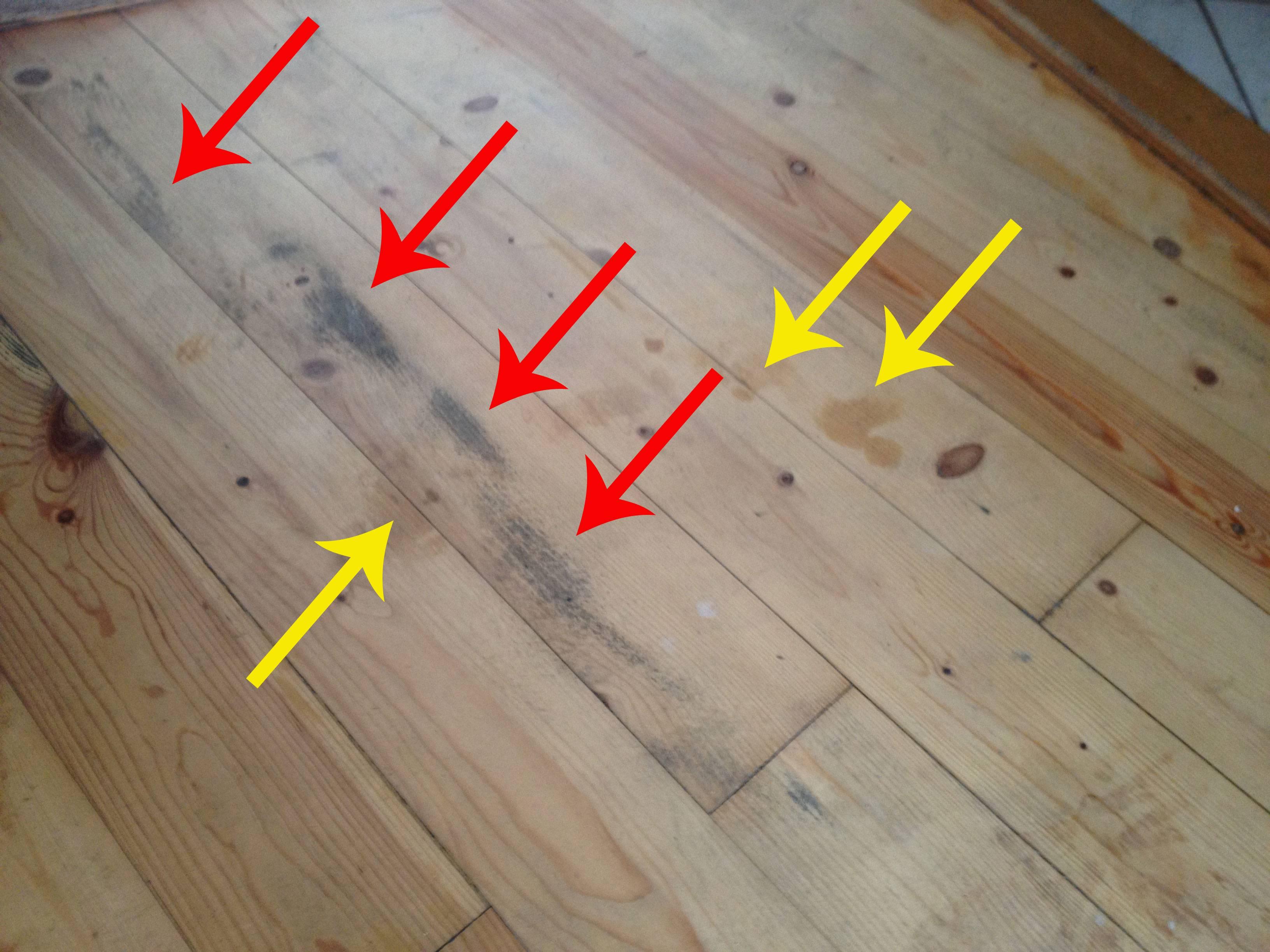 pine wood flooring enter image description here YXCUWAP