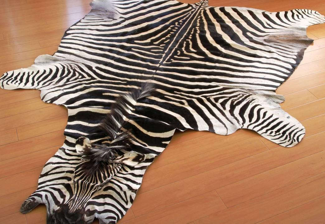 real zebra rug zebra hides and rugs FFTQOSI