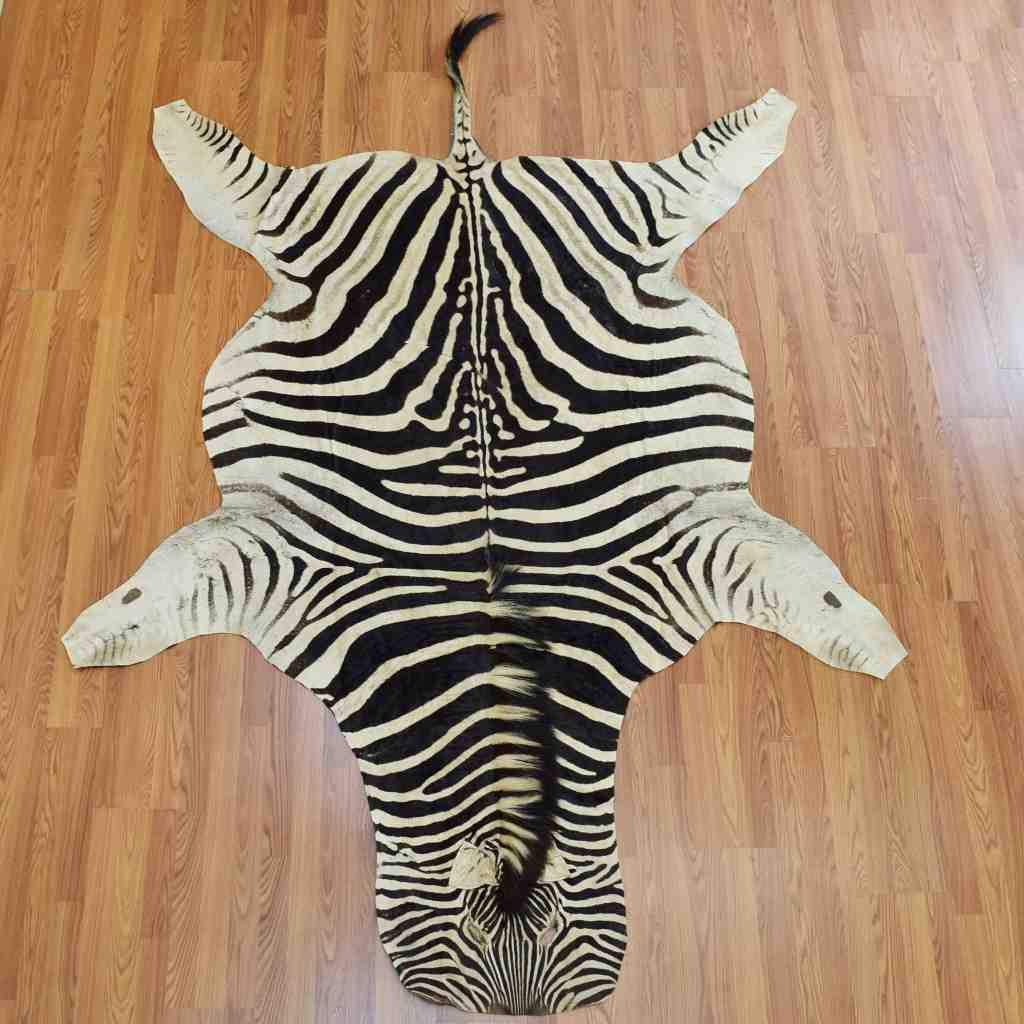 zebra rug zebra skin for rug ... ADKOVGE