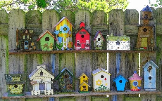 Bird Houses- To have or Not to have | Gardening Forums .