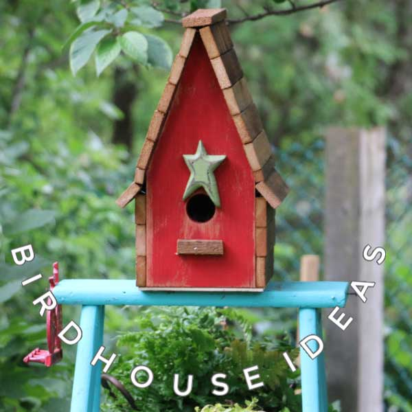 35 Creative and Whimsical Birdhouse Ideas | Empress of Di
