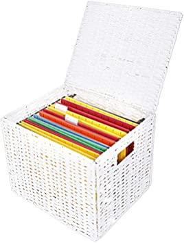 Amazon.com: Collapsible File Storage Organizer, Letter Size .