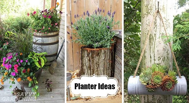 Planter Ideas: 18 Inspiring Design Tips for Gorgeous Garden Containe